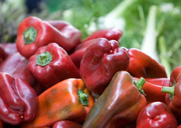 ABHOL-Gemüse von Hoch-Reinhard