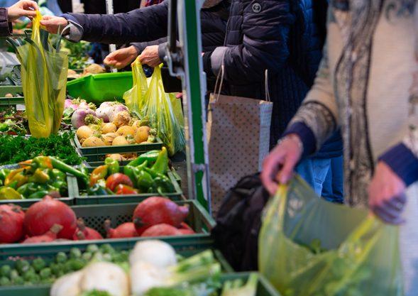 Bioland Gemüse von Hoch Reinhard